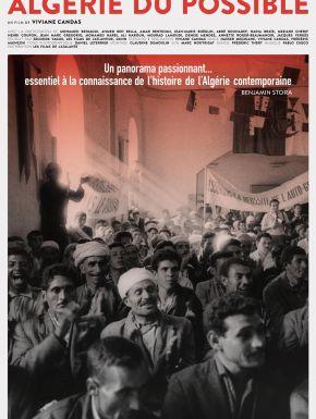 DVD Algérie Du Possible
