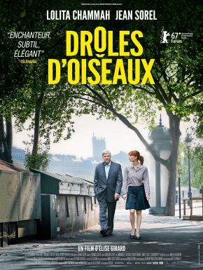 DVD Drôles D'oiseaux