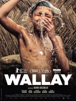 DVD Wallay