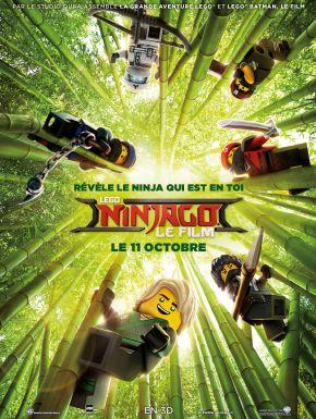 DVD LEGO Ninjago Le Film