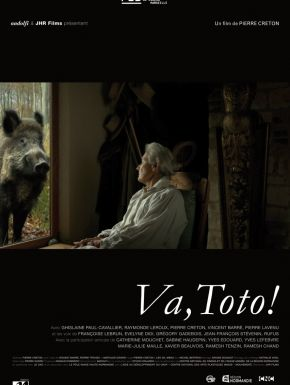 DVD Va Toto !