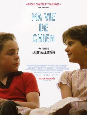 Jaquette dvd Ma Vie De Chien