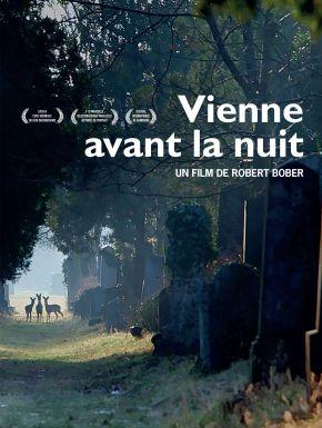 DVD Vienne Avant La Nuit
