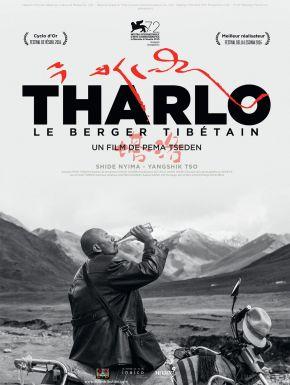 DVD Tharlo, Le Berger Tibétain