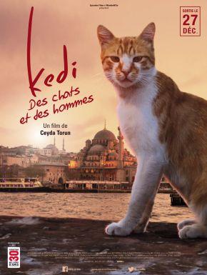Jaquette dvd Kedi - Des Chats Et Des Hommes
