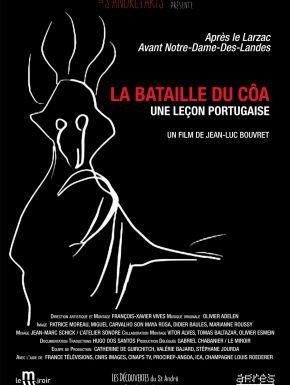 DVD La Bataille Du Côa