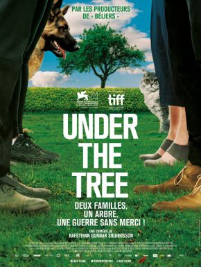 DVD Under The Tree