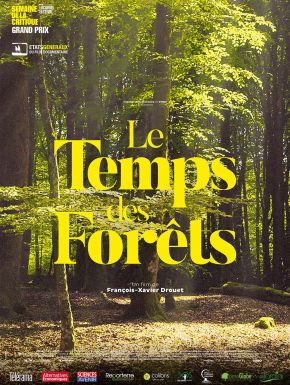 sortie dvd  Le Temps Des Forêts