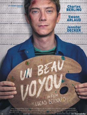 DVD Un Beau Voyou