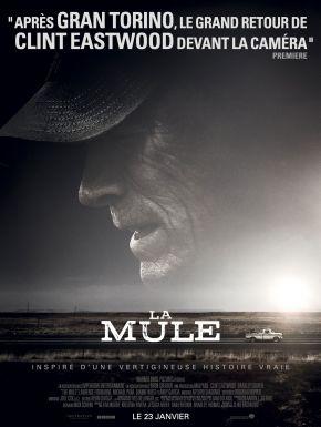 DVD La Mule