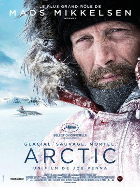 Jaquette dvd Arctic