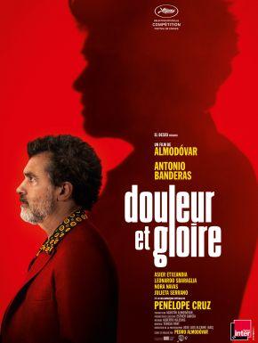 Douleur Et Gloire en DVD et Blu-Ray