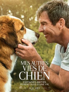 DVD Mes Autres Vies De Chien
