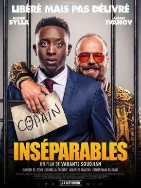 DVD Inséparables