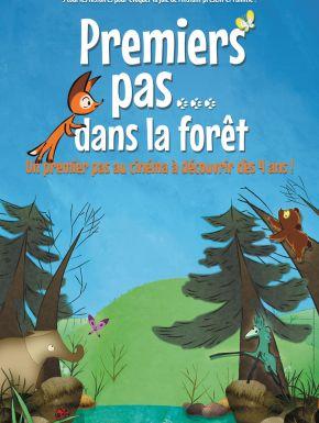 DVD Premiers Pas Dans La Forêt