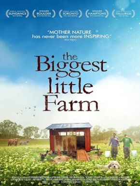 DVD Tout Est Possible (The Biggest Little Farm)