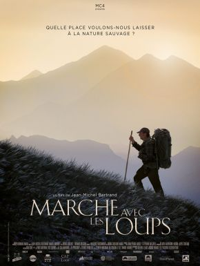 DVD Marche Avec Les Loups