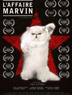 DVD L'Affaire Marvin