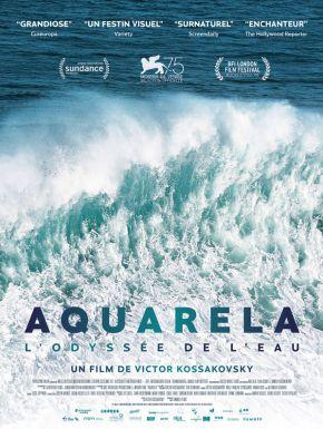 Sortie DVD Aquarela - L'Odyssée De L'eau