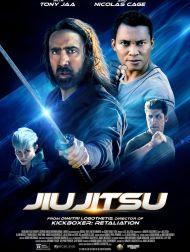 sortie dvd  Jiu Jitsu