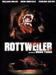 sortie dvd  Rottweiler