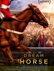 DVD Dream Horse