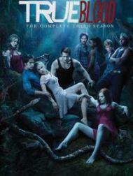 sortie dvd  True Blood - Saison 3