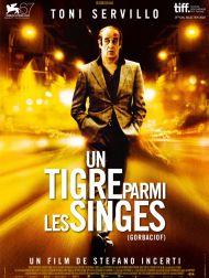 sortie dvd  Un Tigre Parmi Les Singes