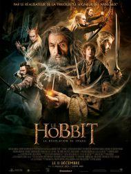 sortie dvd  Le Hobbit : La Désolation De Smaug