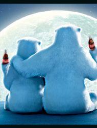 sortie dvd  Les Ours Coca-Cola, Le Film