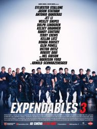 sortie dvd	  Expendables 3