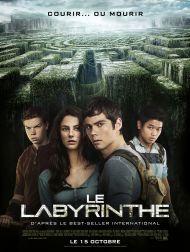 sortie dvd  Le Labyrinthe