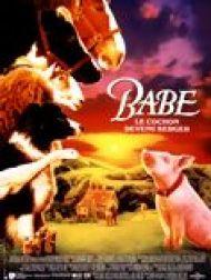 sortie dvd  Babe, Le Cochon Devenu Berger
