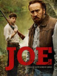 sortie dvd  Joe
