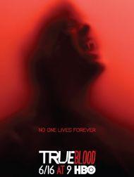 sortie dvd  True Blood Saison 6