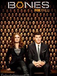 sortie dvd  Bones, Saison 9