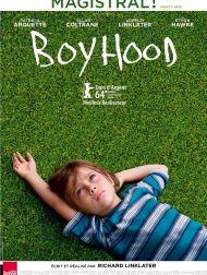sortie dvd  Boyhood