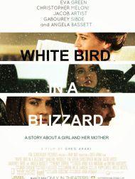 sortie dvd  White Bird