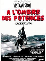 sortie dvd  A L'ombre Des Potences