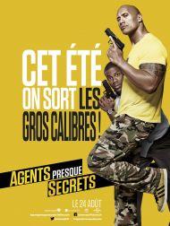 sortie dvd  Agents Presque Secrets