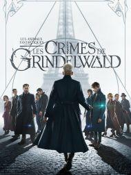 sortie dvd  Les Animaux Fantastiques: Les Crimes De Grindelwald
