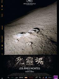 sortie dvd  Les Âmes Mortes - Partie 1