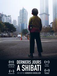 sortie dvd  Derniers Jours à Shibati