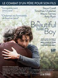 sortie dvd  My Beautiful Boy