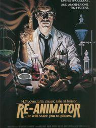 sortie dvd  Re-Animator