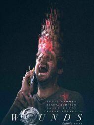sortie dvd  Wounds