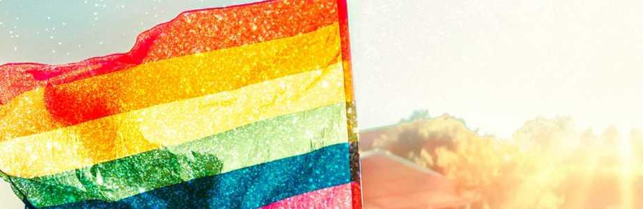 L'Etincelle : Une Histoire Des Luttes LGBT+