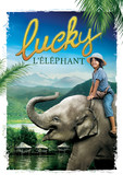 DVD Lucky l'éléphant