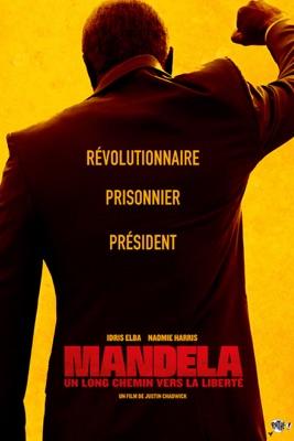 DVD Mandela : Un Long Chemin Vers La Liberté