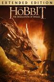 Télécharger Le Hobbit: La Désolation de Smaug